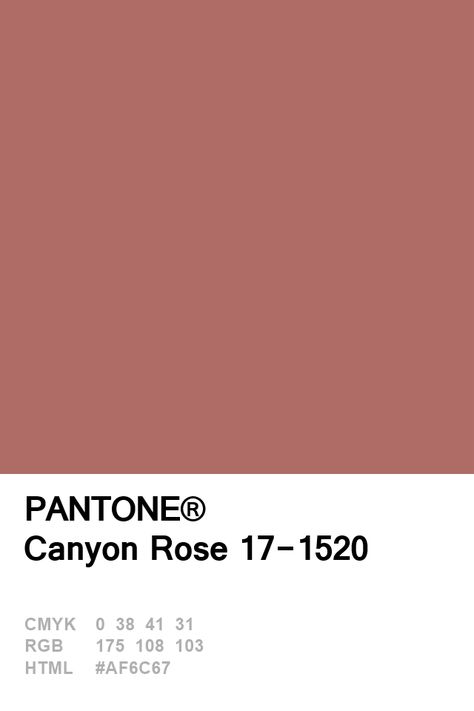 Pantone Canyon Rose 17-1520 Colour of The Day 08 January