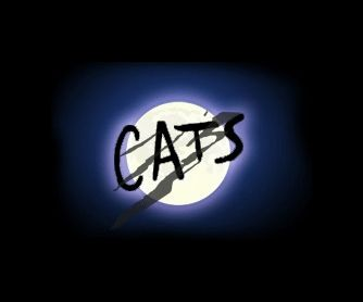 Cats The Musical , Andrew Lloyd Webber , We used to have the