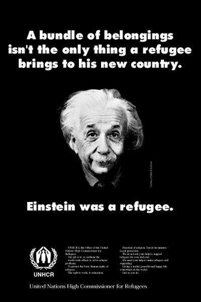 Refugee Quotes Custom Albert Einstein On  Albert Einstein And Albert Einstein