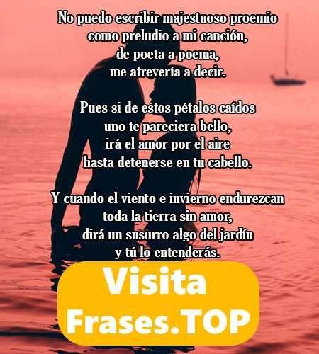 Poemas De Amor Cortos Romanticos Poesia Versos Para Enamorar