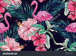 Image Result For Tropical Floral Pattern Desktop Wallpaper Tropical Wallpaper Pattern Wallpaper Tropical Floral Pattern