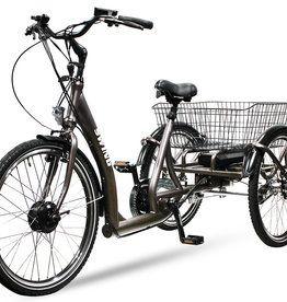 E Bike Lastenrad Pedelec Senioren Dreirad In 2020 Dreirad Pedelec E Bike