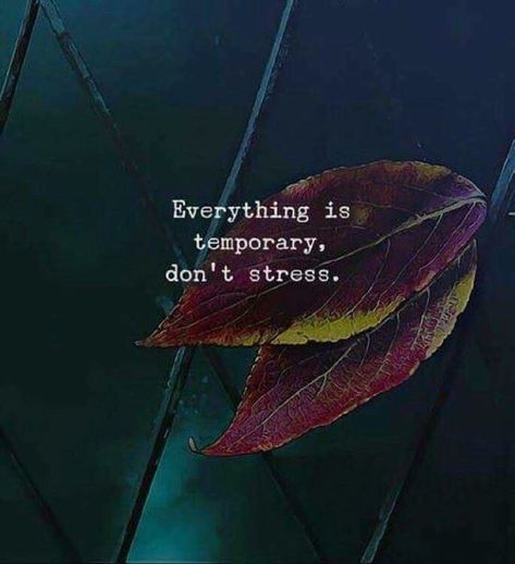 Everything is temporary dont stress. via (https://ift.tt/2GLnrv9)
