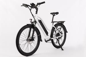An Affordable Powerful Fat Electric Bike With Responsive 12