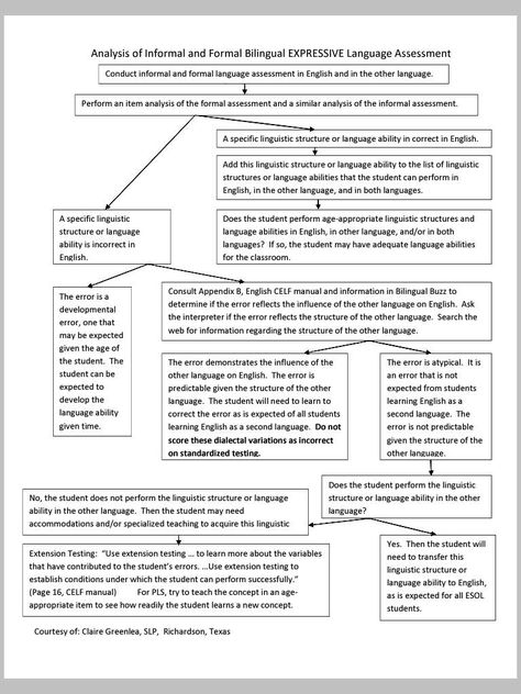 Expressive Language Assessment Flowchart u2013 Bilingual (Analysis of - formal assessment