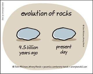 Blagues scientifiques #3 | Funny cartoons, Funny anime pics, Evolution