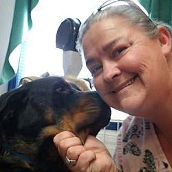 Colon Michigan Rottweiler Meet Joy A For Adoption Https Www Adoptapet Com Pet 22992464 Colon Michigan Rottweiler Rottweiler Rottweiler Dog Pets