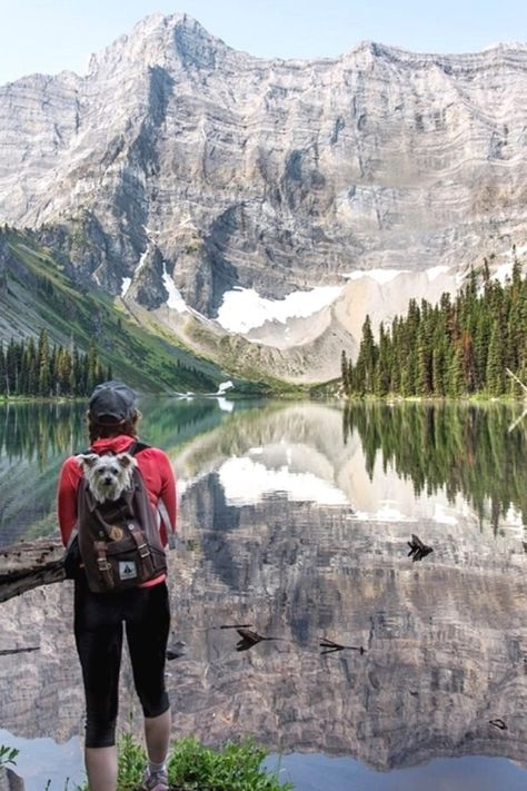 Basic Hiking Tips For Beginners To Safely Enjoy the Outdoors