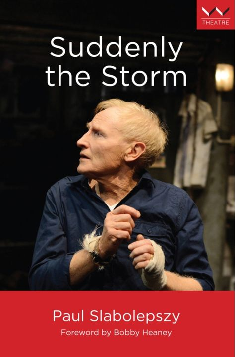 Suddenly the Storm (eBook)