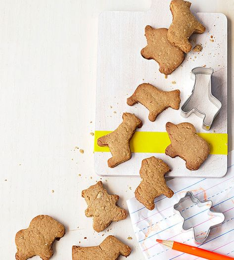 Don't buy, DIY! These homemade Gingerbread Animal Crackers are healthier (and more delicious) than store-bought.