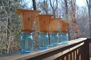How to Make Carpenter Bee Traps