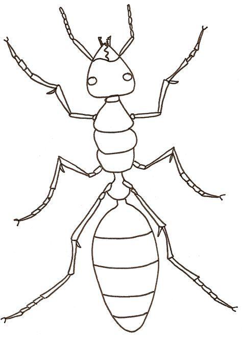 Idee 16 Dessin De Fourmi Et De Cigale En 2020 Coloriage Insectes Fourmis Dessin Fourmis