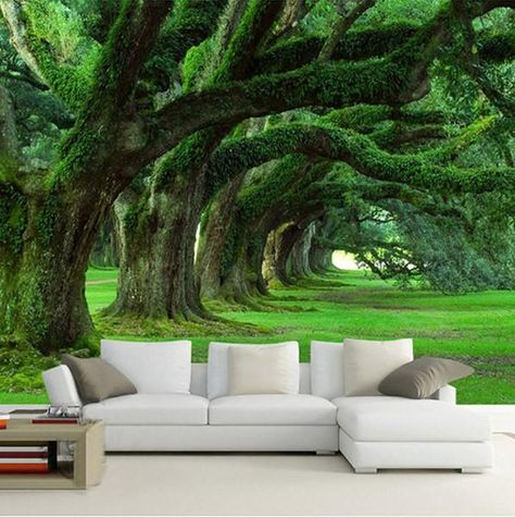 3D Green Forest Moss Trees Wallpaper for Home or Business