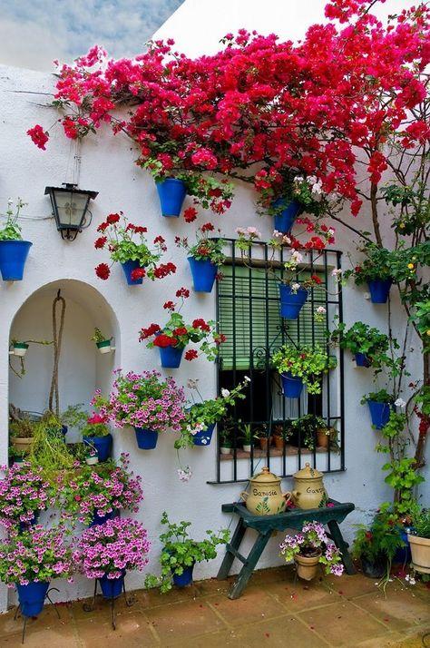 Patio Andaluz Los Patios De Córdoba España En 2019