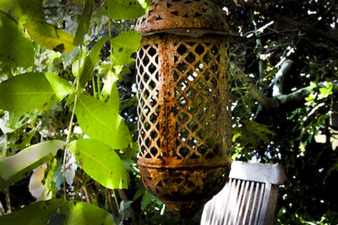 Garden Lantern Color Photograph Canvas Wall Art - (16 x 20) – Rodney Washington | Art Photography - $104 - http://rodneywashingtonartphotography.com/