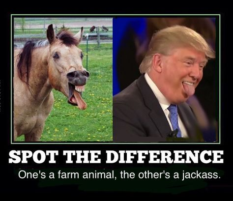 Image result for trump riding a jackass