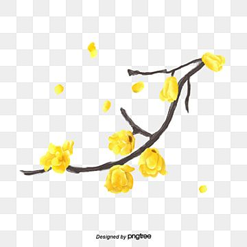 Yellow Beautiful Flower Bees Flower Illustration Yellow Aesthetic Flower Png Images