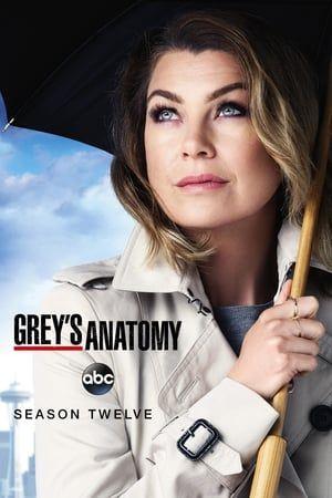 Grey's Anatomy Streaming Saison 11 : grey's, anatomy, streaming, saison, Season, Poster, Assistir, Grey's, Anatomy,, Anatomy, Dublado,, Greys