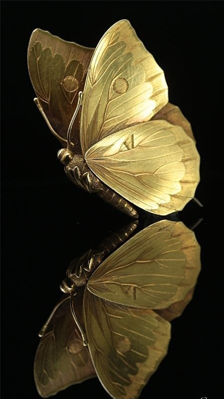 Gold Butterfly On Black Gold Aesthetic Butterfly Wallpaper Gold Wallpaper
