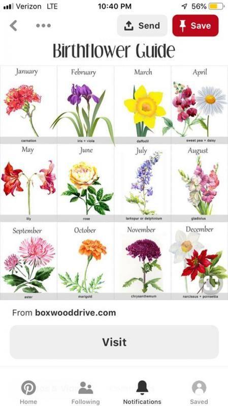 Birthday Month Flowers Birthday Month Flowers Birth Flowers