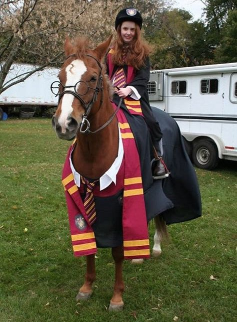 Not quite as awesome as the Pebbles (me, complete with bone through teased hair) and Dee-no (the whole pony, dinosaur tail included) costume my mum made back when I used to compete in horse shows, fancy dress included. Though if Harry Potter had been out then, I would totally have done this.