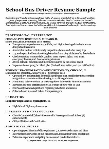 Delivery Driver Job Description Resume Awesome Delivery Driver Resume Sample In 2020 Driver Job Truck Driver Jobs Truck Driver