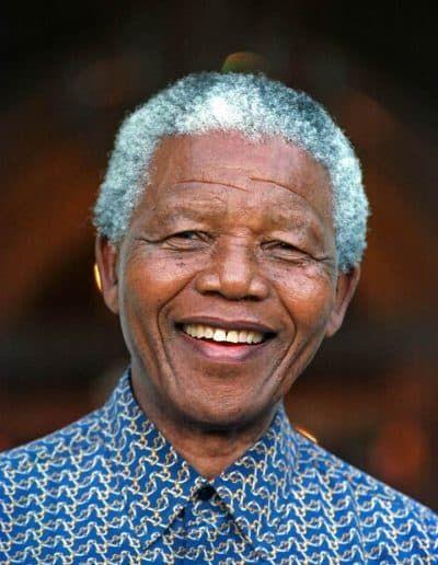 Eneatipo 9 Subtipos Ejemplos Cómo Tratarlo Su Origen Nelson Mandela Nelson Mandela Pictures Mandela