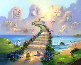Unique Bold And Playful Animal Wall Art Decor Rainbow Bridge Dog Heaven All Dogs
