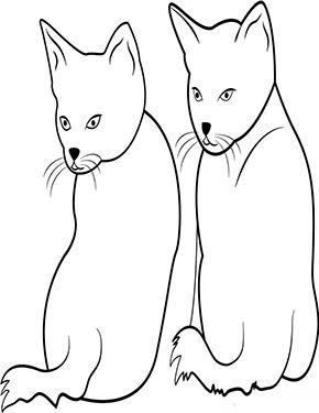 Ausmalbild Zwei Kleine Katzen Zum Ausmalen Ausmalbilder