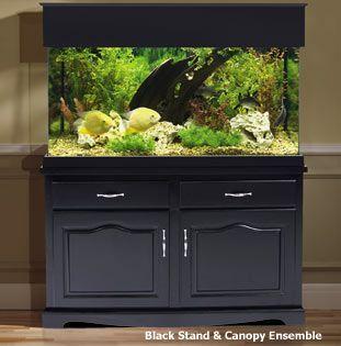 Aquarium Cabinet Could Repurpose Kitchen Cabinets Into This Aquarium Cabinet Aquarium Stand Fish Tank Cabinets