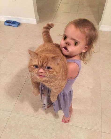 This face swap that is part horrifying, part extremely funny. Literally Just 17 Dumb Photos That Will Make Parents Laugh A Little Too Hard