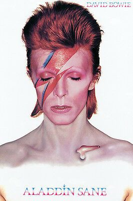 David Bowie Aladdin Sane Poster 24x36 Music 241405 In 2020 David Bowie Poster David Bowie Makeup David Bowie Album Covers