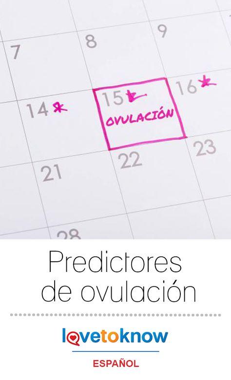 los dias de ovulacion de una mujer