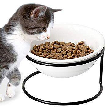 Cwysj Elevated Pet Bowl Raised Dog Feeder Neck Protection Iron Shelf Ceramic Feeding And Drinking Bowls For Dogs And C In 2020 Dog Feeding Pet Bowls Elevated Pet Bowls
