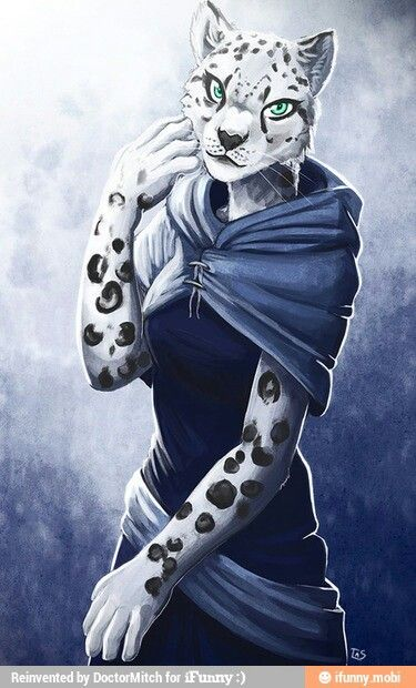 Anthro snow leopard male - photo#14