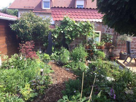 Unser Neuer Garten Angefangen Aus Einer Rasenflache Im Marz