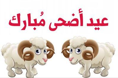أجمل صور عيد الأضحى 2019 Eid Al Adha Wallpapers صور وبطاقات معايدة بعيد الفطر المبارك Flower Background Wallpaper Iphone Wallpaper Vintage Iphone Wallpaper