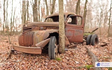 """Wooded old truck, Rusted Forgotten and left to rot in the woods.  Someone once said """" wow that is a nice truck """"  Not anymore!  Though I do feel it still has character"""