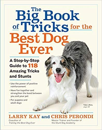The Big Book Of Tricks For The Best Dog Ever A Step By Step Guide