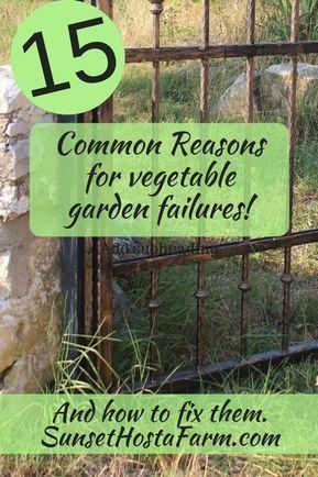15 Common Reasons for Veggie Garden Failures