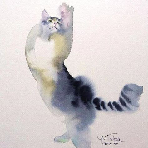 Yutaka Murakami Desenhos De Gatos Animais E Gatos Coloridos