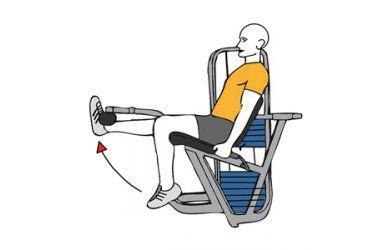 Extensión De Una Rodilla En Maquina Sentado Entrenamientos Com Extensiones Rodillas Almohada