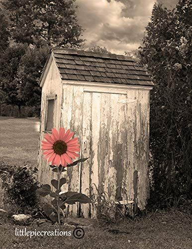 Blue Gray Vintage Outhouse Country Farmhouse Bathroom Home Decor Matted Picture