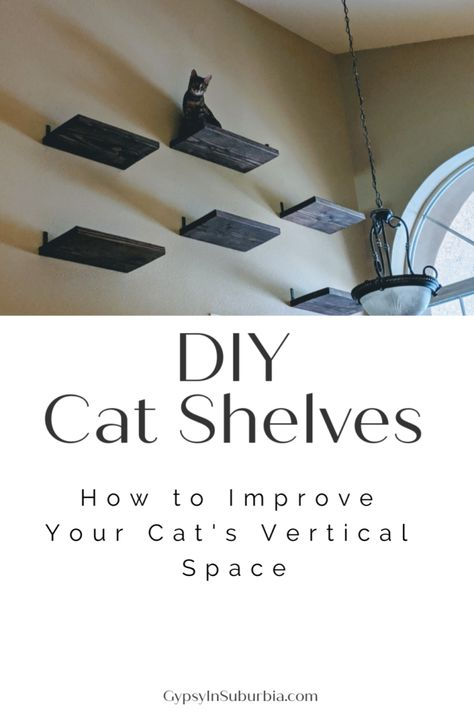 Step by Step Guide on how to improve your cat's vertical space. DIY Cat Shelves and cat scratching post to create your own vertical cat playground. Cat Climbing Shelves, Cat Climbing Wall, Trash To Couture, Diy Cat Shelves, Cat Care Tips, Pet Tips, Dog Care, Cat Climber, Cat Steps