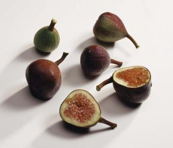 companion plants for figs