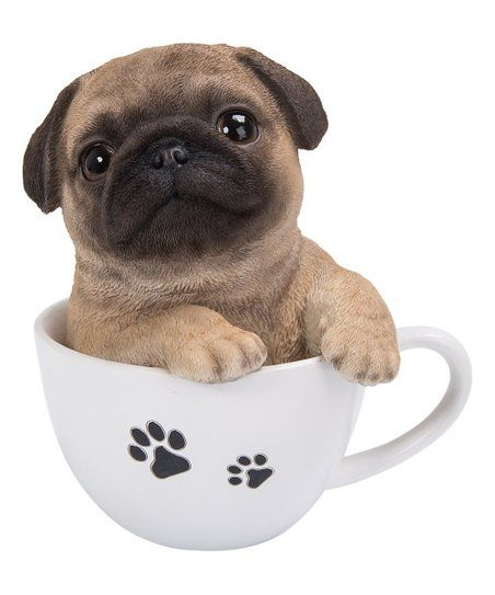 Hi Line Gift Pug Puppy In Teacup Figurine Zulily Pug Puppy