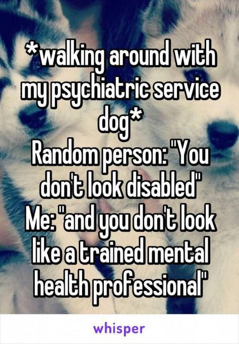 Click The Link To Learn More On Dog Training Should You Get A Pet Dog Which Had Been In With Images Psychiatric Service Dog Psychiatric Services Service Dogs