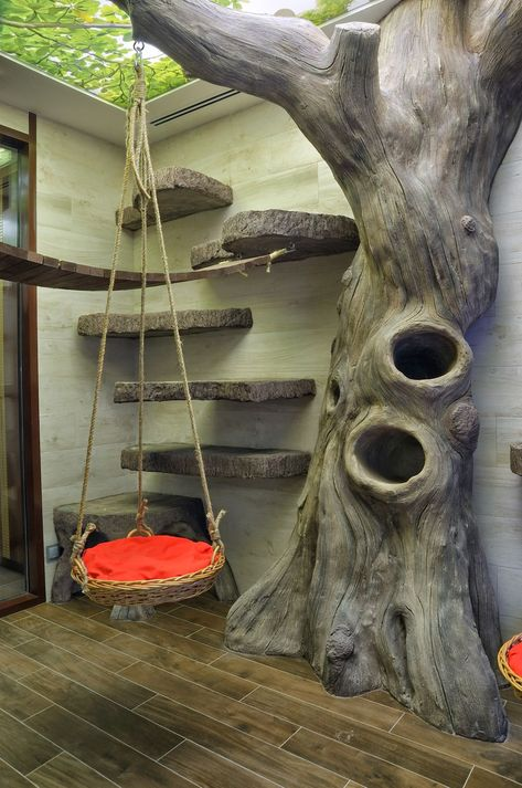 Über die Cattery – The Cattery Murmulet - Katzenrassen Beautiful Cats Animal Room, Diy Cat Tree, Cat Trees, Outdoor Cat Enclosure, Cat Playground, Outdoor Playground, Playground Design, Cat Room, Cat Condo