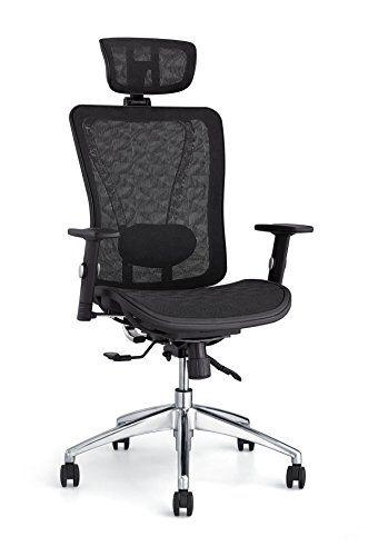 Strange Cedric Ergonomic Mesh Office Chair High Back Desk Chair Home Interior And Landscaping Ologienasavecom