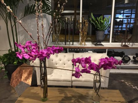 A truly architectural arrangement made from orchids and pussy willow